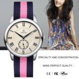 Premières montres de luxe de montre de type de Dw de marque pour la montre-bracelet militaire 71002 de quartz de courroie en nylon de dames