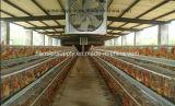 Ventilatore di salto della Camera del coltivatore del ventilatore della cambiale dell'aria del ventilatore della brezza fredda del ventilatore di scarico