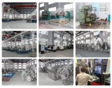 Terminar la pequeña planta de embotellamiento para la cadena de producción carbónica del refresco