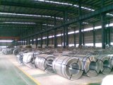 Coating Galvanized Steel Coils / Color Coated Steel Coil