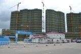 Alzamiento de elevación de la grúa del edificio de Sc200 y de CH-235construction