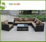 Sofà esterno del rattan della mobilia esterna del patio