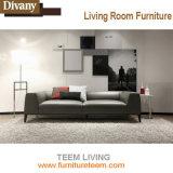 Verter el sofá de cuero del hotel de los muebles del diseño