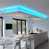 3528 60LEDs LED tira flexible de la luz del jardín con CE ETL RoHS