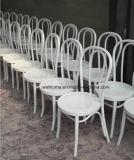 Cadeira quente de Thonet Bentwood da venda para a venda
