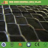 Гальванизированный расширенный лист решетины металла используемый в стене здания