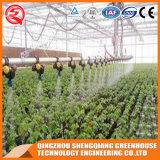 농업 플라스틱 온실 야채 / 꽃에 대한