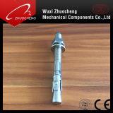 Rostfreies Steel304 316 und Kohlenstoffstahl-Keil-Anker oder durch Schraube