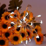 Lumières actionnées solaires de chaîne de caractères de câblage cuivre des prix bon marché DEL de qualité