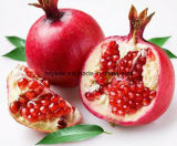Ellagic кислота CAS отсутствие выдержки корки Pomegranate 476-66-4