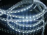Ce& RoHS, 보장 2 년, SMD 2835 LED 유연한 지구, 테이프 빛