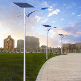 2016 alto indicatore luminoso di via solare di luminosità LED (JINSHANG SOLARI)