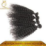 estensione riccia crespa brasiliana dei capelli umani di #1b 8A