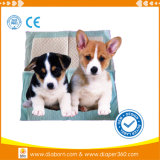Weiches Quality Diaposable Super Absobent Pet Diaper und Pet Pad
