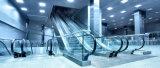 Einfacher Einkaufen-Speicher-Hotel-Passagier-Aufzug-beweglicher Bürgersteig