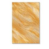 La cava Fr23008 copre di tegoli la stanza da bagno delle mattonelle di /Wall