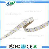 전문가는 주문을 받아서 만들었다 Epistar SMD 5050 CCT Adustable LED 지구 (LM5050-WN36-CCT)를