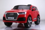 Conduite populaire neuve de la plaque d'immatriculation 2016 sur le véhicule Audi Q7
