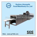 Automático Moulding Máquinas chocolate Expertos Máquina (QJZJQI-QIII)