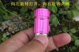 Mini véhicule de couleurs multi portatives chargeant la lampe-torche de torche de DEL