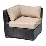 Ensemble en osier de sofa de salon de rotin de meubles de jardin extérieur de patio