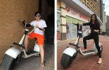 Bici caliente de la motocicleta de la venta caliente que amortigua 1000W E-Scooter