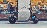 Manera eléctrica de Hoverboard Segboard Seg de la vespa de Citycoco Gyropode Harley de la manera con el motor 800W