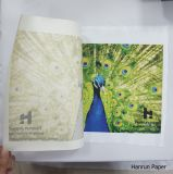 крен бумаги переноса сублимации 30/45/55/70/80/100/120GSM для ткани сублимации