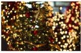 クリスマスの結婚式LhSs50のための太陽エネルギー50LEDストリングライト
