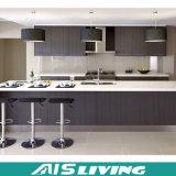 Cuoboard moderno com mobília elétrica dos gabinetes de cozinha do dispositivo (AIS-K067)