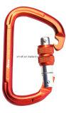De D-gevormde OpenluchtVeiligheid Carabiner van de Bergbeklimming van het Toestel Screwlock (C13)