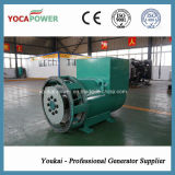 High Quality의 600kw AC Brushless Alternator
