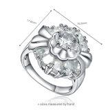 Spark Encanto anillo de plata de la joyería con CZ (R-0600)