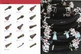 Femmina metrica 24° Montaggio di tubo flessibile idraulico del giunto circolare L.T. del cono (20411)
