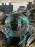 チタニウムGr. 7の高品質のチタニウム及びチタニウムの合金の管/管