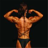لأنّ عضلة يكسب إختبار دعامة [أنبوليك سترويد] تستوسترون [بروبيونت]