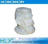 최고 가격을%s 가진 모형을 인쇄하는 절묘한 3D
