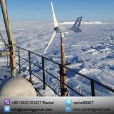 300Wボート(小型3 300W)のための小さい風力の発電機システム
