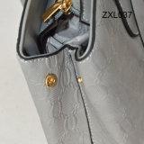 2016년 디자이너는 PU 가죽 숙녀를 자루에 넣는다 Bags Promotion Tote Handbag Zxl037