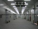 Congélateur de réfrigérateur industriel