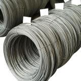 못을 생성하기 위하여 열심히 당겨지는 낮은 탄소 철강선 SAE1006