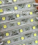 최신 제안 SMD 5050 모듈 LED 표시 점화
