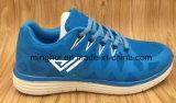 Le calzature di vendita superiori di prezzi di fabbrica mettono in mostra le scarpe da tennis dei pattini