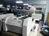Impressora Flatbed UV solvente de Eco do t-shirt de matérias têxteis da lona