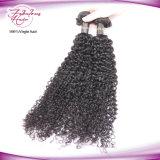 Выдвижение курчавых волос Remy нового типа прибытия индийское людское Kinky