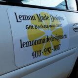 Publicidade impressa personalizada Impressão de ímãs de carros duráveis