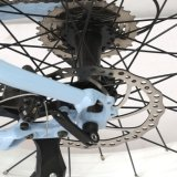 250W E 자전거 26 인치 뚱뚱한 타이어 전기 산 Ebike 중앙 모터 디스크 브레이크 리튬 건전지
