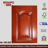 Неофициальные советники президента противостоят двери кухонного шкафа замены (GSP5-022)