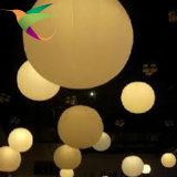 Aufblasbare Partei-Dekoration Longhorn der Beleuchtung-Iflt-17021324