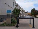 Инструментальный металл лазера производит ориентированный на заказчика динозавра